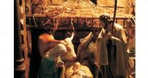 Cirkevné centrum voľného času Vám želá požehnané prežitie Vianočných sviatkov a veľa Božích milostí v roku 2019